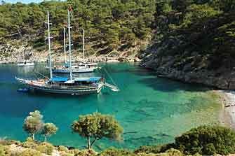 blue_cruise