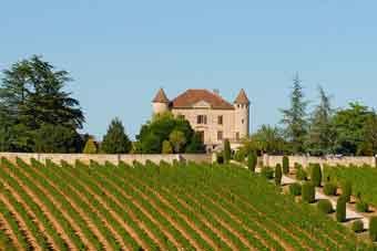 Loire viti