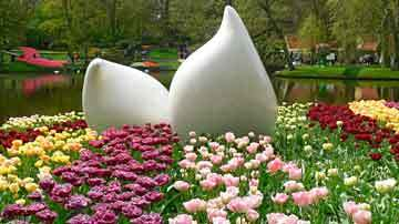 Keukenhof, Flowers as far as your eyes can see, 21 March – 10 May 2020