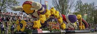 Blumenkorso Niederlande