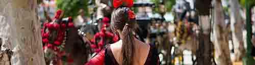 feria de caballo jerez, Španělsko